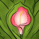 Как сохранить чувствительность после интимной пластики?