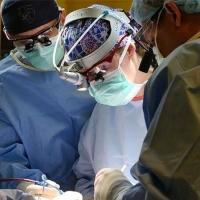 Женщины-пластические хирурги оценивают свои успехи ниже, чем мужчины